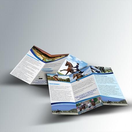 Διαφημιστικά Έντυπα - φυλλάδια  Α3